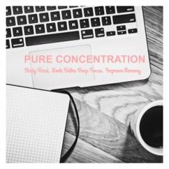 Study Help: Concentration (Original Mix)
