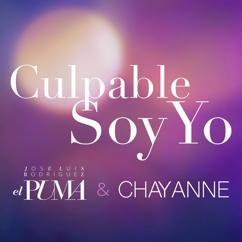 José Luis Rodríguez, Chayanne: Culpable Soy Yo