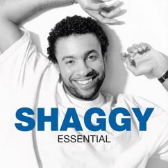 Shaggy: Essential
