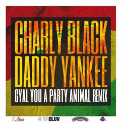 Daddy Yankee, Charly Black: Gyal You A Party Animal (Remix)