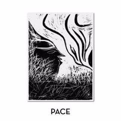 Marvin Horsch: Pace