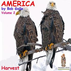 Bob Gallo: America, Vol. 2. Songs of Harvest