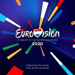 Various Artists: Eurovision 2020 - A Tribute To The Artist And Songs - Featuring The Songs From All 41 Countries