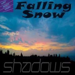 Falling Snow: Shadows