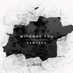 Avicii: Without You (Remixes)