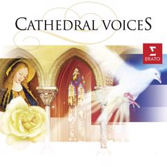 Various Artists: Cathedral Voices