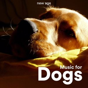 Relax & Relax,Osmosis Now: Music for Dogs: Relaxing Music for Dogs