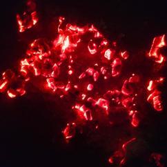 Stef Vink: Fire Dance