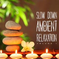 Various Artists: Slow Down Ambient Relaxation, Vol. 1