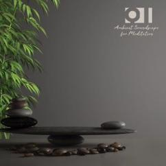 Various Artists: Qi: Ambient Soundscape for Meditation