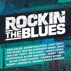 Various Artists: Rockin' The Blues