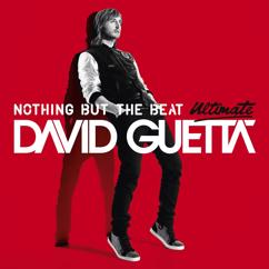 David Guetta, Afrojack: The Future