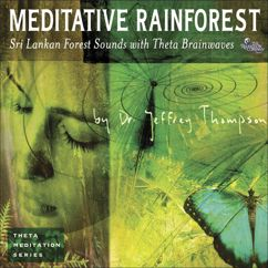 Dr. Jeffrey Thompson: Meditative Rainforest