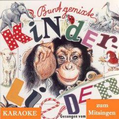 Robert Opratko feat. seine Solisten: Bunt gemixte Kinderlieder - Karaoke zum Mitsingen