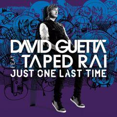 David Guetta: Just One Last Time