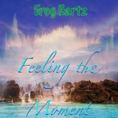 Various Artists: Feeling the Moment