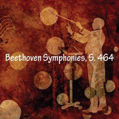 Andrew Hamilton: Beethoven Symphonies, S. 464