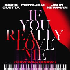 David Guetta, MistaJam, John Newman: If You Really Love Me (How Will I Know) (Extended)