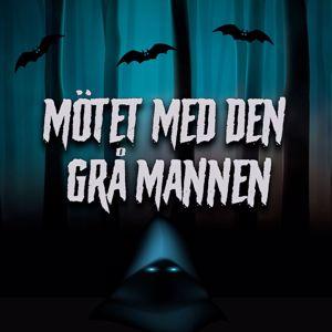 Håkan Serner: Mötet med den grå mannen