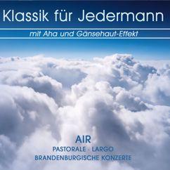Various Artists: Klassik für Jedermann mit Aha und Gänsehaut-Effekt
