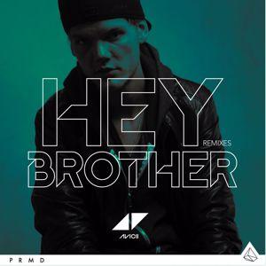 Avicii: Hey Brother (Remixes)
