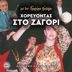 Γρηγόρης Καψάλης: Χορεύοντας στο Ζαγόρι