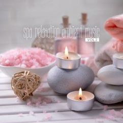 Various Artists: Spa Relaxation Ambient Music, Vol. 2