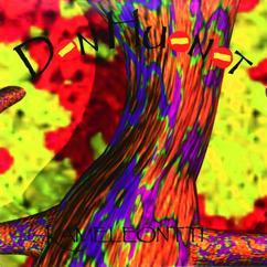 Don Huonot: Kameleontti