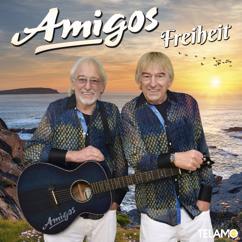 Amigos: Déjà vu