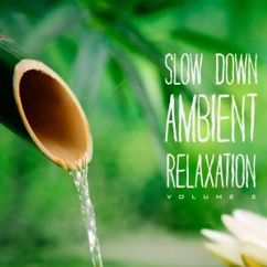 Various Artists: Slow Down Ambient Relaxation, Vol. 2