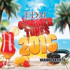 Various Artists: EDM Summer Tunes 2016