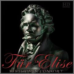 Beethoven Consort: Ode to Joy
