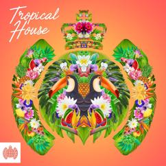 Various Artists: Tropical House - Ministry of Sound