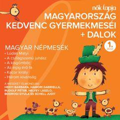 Various Artists: Magyarország Kedvenc Gyermekmeséi + Dalok 1. (Magyar Népmesék)