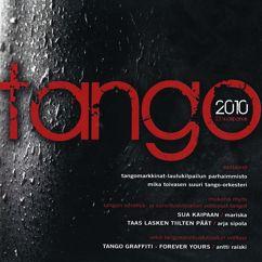 Various Artists: Tangomarkkinat 2010