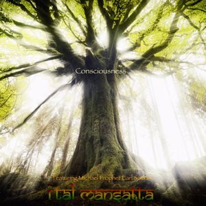 Ital Mansatta: Consciousness