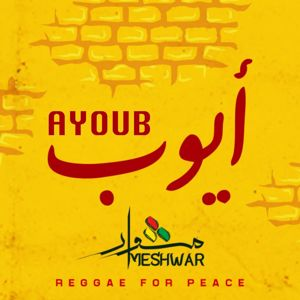 Meshwar: Ayoub