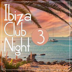 Various Artists: Ibiza Club Night 3