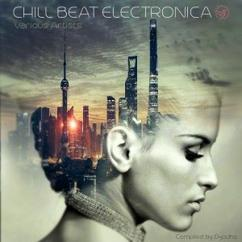 Various Artists: Chill Beat Electronica