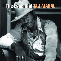 Taj Mahal: The Essential