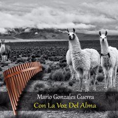 Mario Gonzales Guerra: Con la Voz del Alma