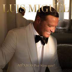 Luis Miguel: Llamarada