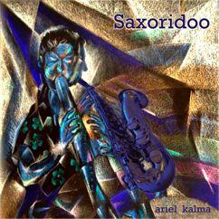 Ariel Kalma: Saxoridoo
