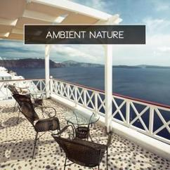 Various Artists: Ambient Nature