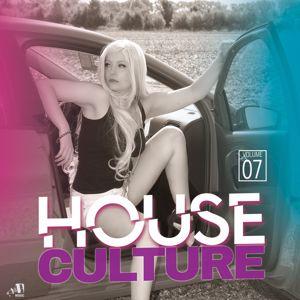 Various Artists: House Culture, Vol. 7