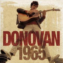Donovan: 1965