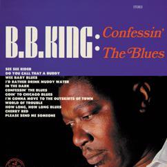 B.B. King: World Of Trouble